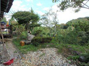 千葉県夷隅郡大多喜町堀切の不動産、田舎暮らし、移住、東側は和の庭です