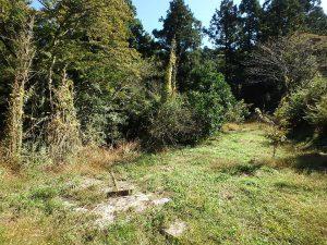 千葉県鴨川市川代の不動産、山林、別荘、キャンプ場用地、ここも平坦で使えそう