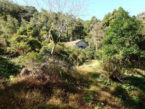 千葉県鴨川市川代の不動産、山林、別荘、キャンプ場用地、造り上げていく楽しみも