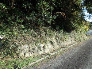 千葉県南房総市中の不動産、山林、唯一道路に接している場所