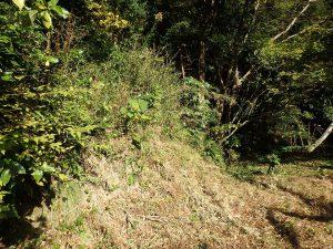 千葉県南房総市中の不動産、山林、南側の歩き道から少し