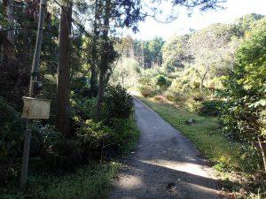 千葉県鴨川市川代の不動産、山林、別荘、キャンプ場用地、ここは空気が良いですね