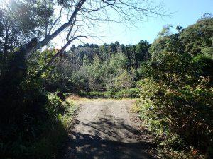 千葉県鴨川市川代の不動産、山林、別荘、キャンプ場用地、空が開けてきました