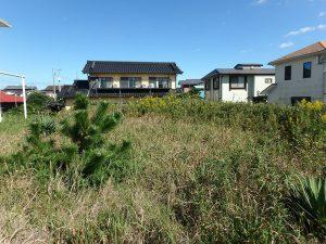 千葉県富津市千種新田の不動産、土地、海が見える、ケープショアガーデン、海一望、別荘地内の最南東の位置