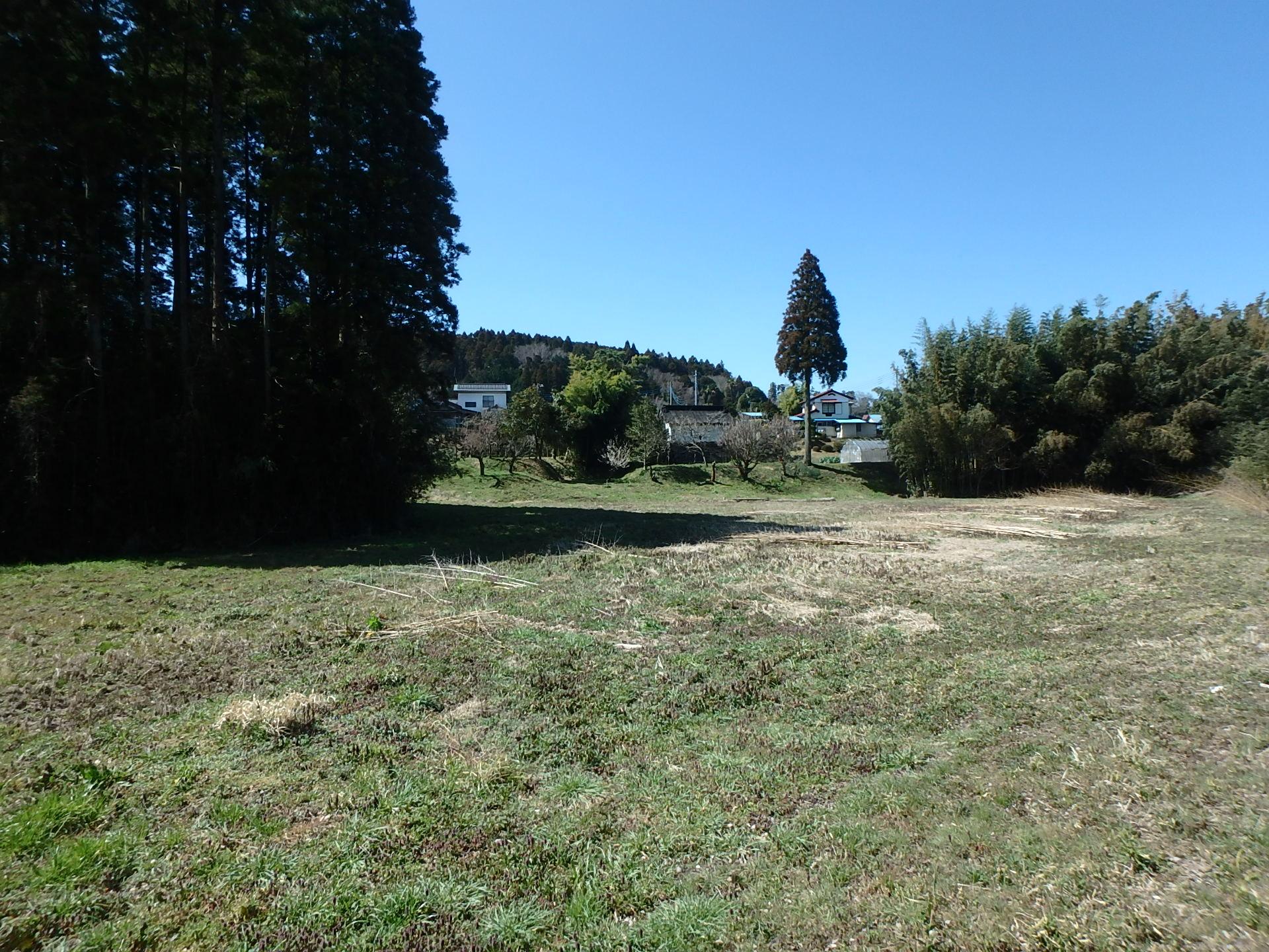 千葉県君津市向郷の不動産、広大な土地、キャンプ場やドッグラン用地