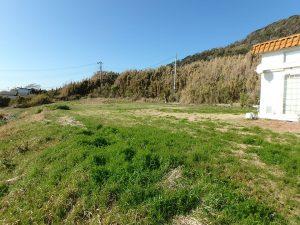 千葉県館山市西川名の不動産、海が見える土地、広い土地、自然が詰まった物件です