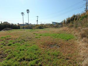 千葉県館山市西川名の不動産、海が見える土地、広い土地、色々な用途で検討できるな