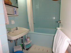 千葉県館山市洲崎ロイヤルマンション、海一望別荘、玄関対面に浴室
