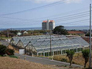千葉県南房総市和田町花園の土地、売地、海一望、海が見える、肉眼ではもっと良い景色