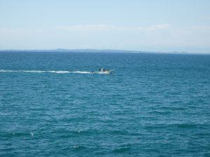 千葉県南房総市高崎の別荘、ハーバーアイランド岩井、海目の前、目の前に釣り船が現れた