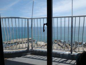 千葉県鴨川市江見青木の不動産、マンション、南鴨川シーハイツ、海望む、座ってても海が見える