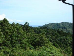 千葉県鴨川市二子の不動産、海が見える別荘、二子棚田、おしゃれ、微かに海を遠望
