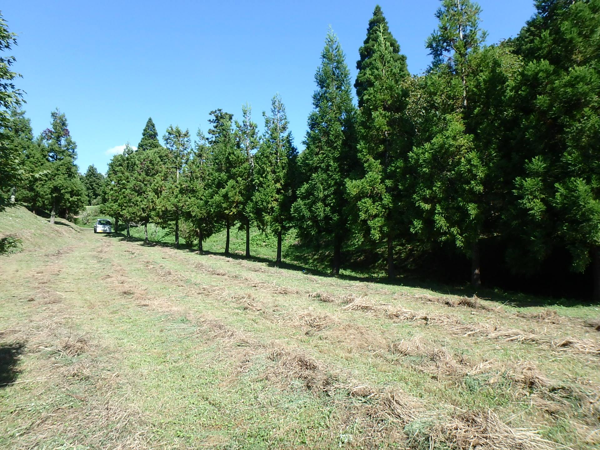 千葉県鴨川市平塚の不動産、広い土地、ログハウス用地、小屋造り