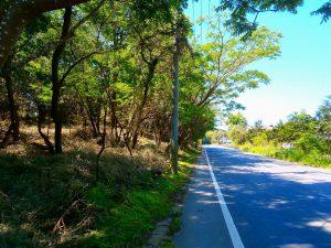 千葉県君津市山滝野の土地、山林、キャンプ、事業用、道路は県道93号線
