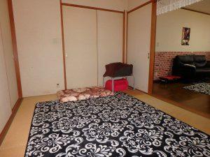 千葉県鴨川市太尾の不動産、戸建て、鴨川移住、和室は6帖