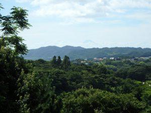 千葉県館山市神余の不動産、山の中の別荘、富士山望む、ゴルフ場と富士山が見える
