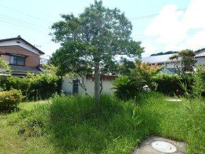 千葉県館山市上真倉の不動産、中古住宅、平家、田舎暮らし、お庭は適度な広さ