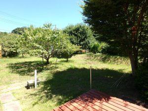 千葉県館山市神余の不動産、平家別荘、敷地広い、ドッグラン、本当に広ーいお庭です