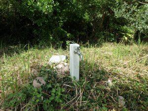 千葉県館山市犬石の不動産、土地、広い土地、別荘用地、ログハウス用地、上水道は引込済み