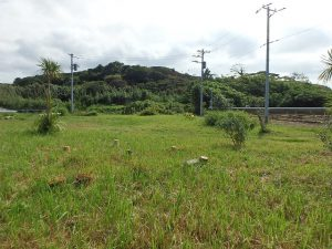 千葉県館山市犬石の不動産、土地、広い土地、別荘用地、ログハウス用地、PVキャンプ用地に